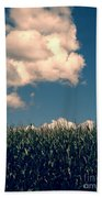 Vermont Cornfield Beach Towel by Edward Fielding