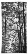 Vermont Forest Sunrise Ricker Pond Black And White Beach Towel