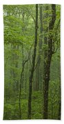 Vermont Mount Mansfield Green Forest Fog Panorama Beach Towel