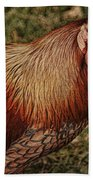 Vermont Rooster Beach Towel
