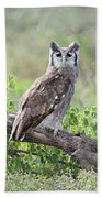 Verreauxs Eagle-owl Bubo Lacteus Beach Towel