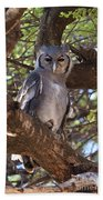 Verreauxs Eagle Owl In Tree Beach Towel