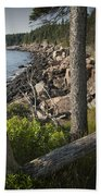 Vertical Photograph Of The Rocky Shore In Acadia National Park Beach Towel