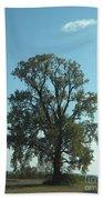 Vertical Tree Beach Towel