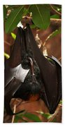 Very Fruity Bat Beach Towel