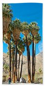 Very Tall Fan Palms In Andreas Canyon In Indian Canyons-ca Beach Towel