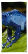 Very Tiny Blue Poison Dart Frog Beach Towel