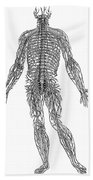 Vesalius: Nerves, 1543 Beach Towel
