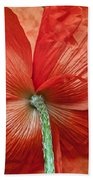Veterans Day Remembrance Beach Towel