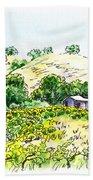 Viano Winery Martinez California Beach Sheet