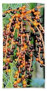 Vibrant Berries Beach Towel