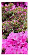 Vibrant Colors Beach Towel