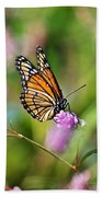 Viceroy Butterfly Beach Towel