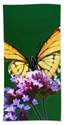 Viceroy Butterfly Square Beach Towel