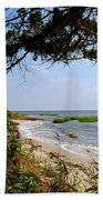 View At East Point  Beach Towel