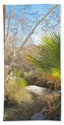 View From Creek Bed In Andreas Canyon In Indian Canyons-ca Beach Towel