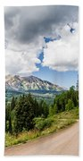 View From Kebler Pass Beach Towel