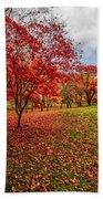 View Of Autumn Beach Towel