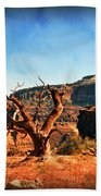 View Of The Canyon Beach Towel by Marty Koch