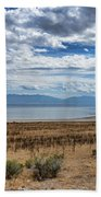 View Of Wasatch Range From Antelope Island Beach Towel