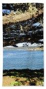 Vignette Beach Towel