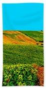 Vincent Van Gogh's Inspiration Beach Towel