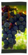 Vine Purple Grapes  Beach Towel