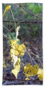 Vines On The Fence Beach Towel