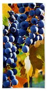 Vineyard 2 Beach Towel