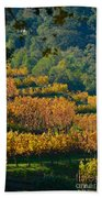 Vineyard Fall Beach Towel