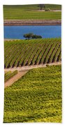 Vineyard On A Lake Beach Towel