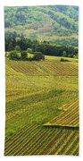 Vineyards Below Zellenberg France 1 Beach Sheet