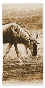 Vintage African Safari Wildbeest Beach Towel