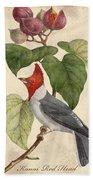 Vintage Bird Study-d Beach Towel