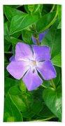 Violet Herbaceous Periwinkle Beach Towel