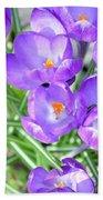 Violet Lilies Beach Towel