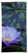 Violet Lily Beach Towel