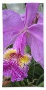 Violet Orchid Beach Towel