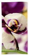 Violet Orchids Brushed With Gold Beach Towel
