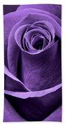 Violet Rose Beach Towel by Adam Romanowicz