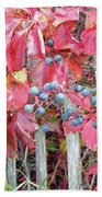Virginia Creeper Fall Leaves And Berries Beach Towel
