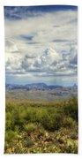 Visions Of Arizona  Beach Towel