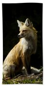 Vixen Fox   #4251 Beach Towel