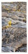 Volcano Regeneration Beach Towel
