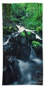 Wahkeenah Falls Columbia River Gorge Nsa Oregon Beach Towel