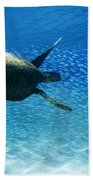 Waimea Turtle Beach Towel