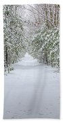 Walk In Snowy Woods Beach Towel