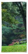 Walk In The Park Beach Towel by Christina Rollo