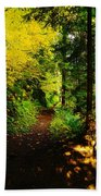 Walking An Autumn Path Beach Towel