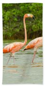 Walking Flamingos Beach Towel